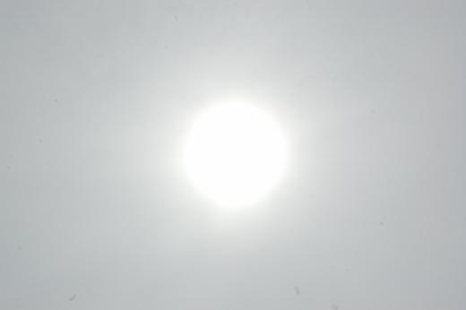 DSC_0062 (520x346).jpg
